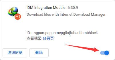 百度云盘IDM满速下载方法及配置教程